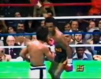 Action Pose: Ray Leonard Punch