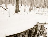 New England Fine Art Photography