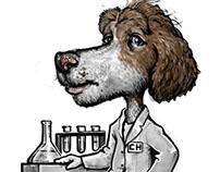 www.collegehounds.com