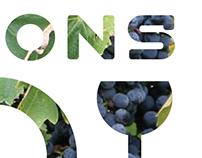 Vignerons Bio en Rhône-Alpes