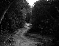Landscapes - 001