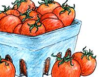 Food Illustration I