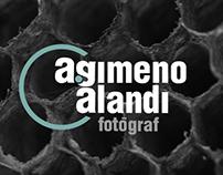 A. Gimeno Alandi (logo)