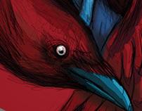 the raven girl