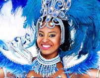Carnaval Prudente 2014