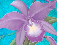 New Paintings at the United States Botanic Garden
