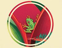 Bromeliad Ecosystem