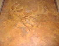 Elk & Tracks