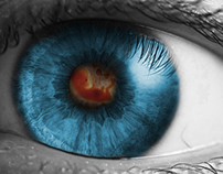 The eye of the life