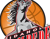 Idaho Stampede - CBA Basketball League