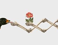 Flora/Fauna