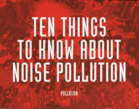 Noise Pollution Booklet