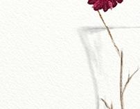 Still Life Vase 1