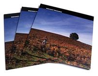Whirlwind D 'Nomansland' LP