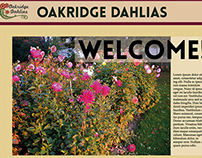 Oakridge Dahlias website