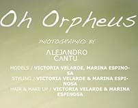 Oh Orpheus Pt 2