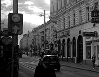 Vienna inside