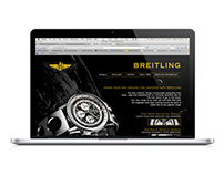Breitling Flash based college website design