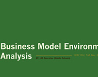 Business Model Environment Analysis