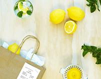 'Lemon Zest' Australian Infront, Visual Response #07