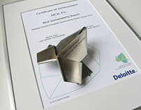 Deloitte CE Sustainability Report Award 2013