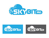 Corporate Identity and Branding Presentation -SKYBIT
