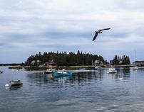 Maine Scenes