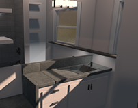 1607 Bathroom Pre-Viz