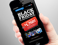 Promotional Campaign: Digital: Black Friday