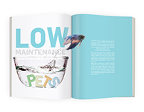 Low Maintenance Pets Editorial Redesign