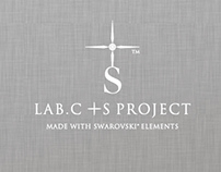 Lab. C + S project