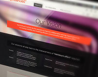 New Venture Product Brand Concept: Web Site