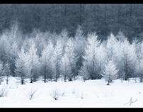 雪(Snow)