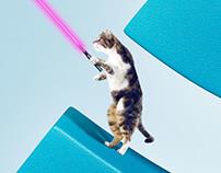 SIG Optical fiber Campaign