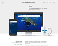 Blue Whale Safari Branding