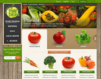 FreshPicks.com Website design