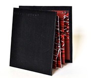 Chaos Theory Silkscreen Book