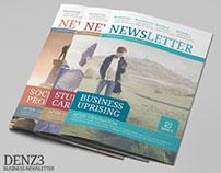 Denz 3 Business Newsletter Template | Modern Design