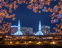 Portland, Oregon Cherry Blossom Convention Towers.
