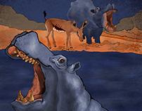 Inaya's Journey Illustrations