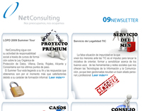 Netconsulting Newsletter 09