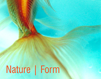 Nature inspired forms
