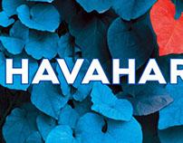Havahart Repellents