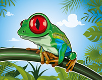 grenouille frog illustration
