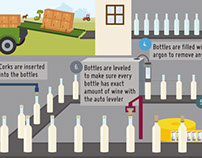 Wine Bottling Process Infographic