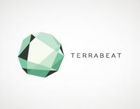 Terrabeat installation