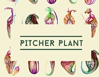 pitcher plant pattern