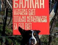 Typonine posters