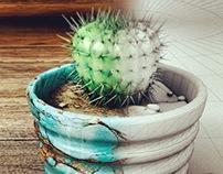 Cactus modeling design
