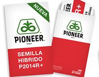 Pioneer - Branding